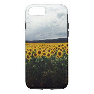 Washington Sunflower Field Iphone Case