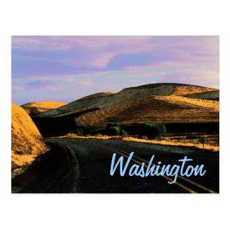 Washington Wheat Postcard