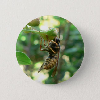 Wasp On Flower 6 Cm Round Badge