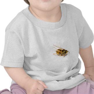 Wasp T Shirts