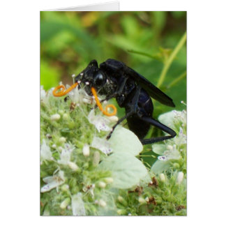 Wasp with a handlebar moustache! - Vertical Greeting Card