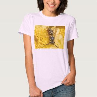 Wasps Tshirt