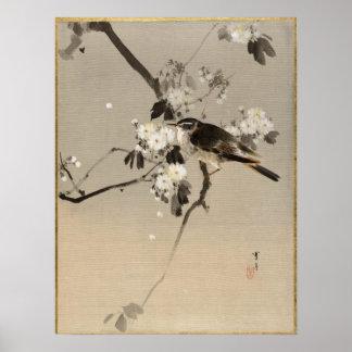 Watanabe Seitei Bird on a Flowering Branch Poster