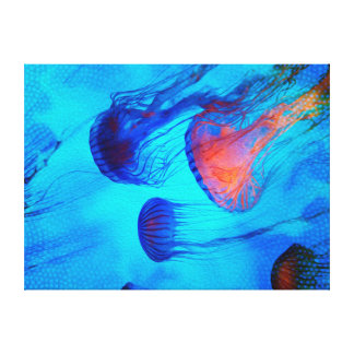 Watch the Flow of the Jelly Glow Canvas Print