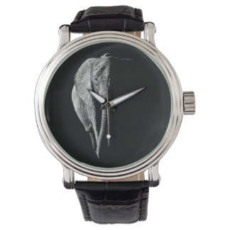 Watch with African Elephant