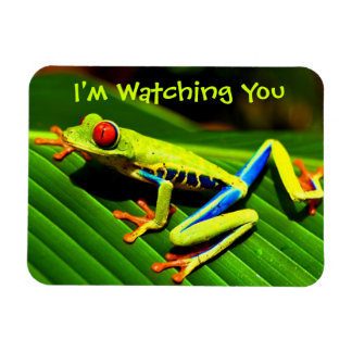 Watched by Tree Frog Fridge Magnet