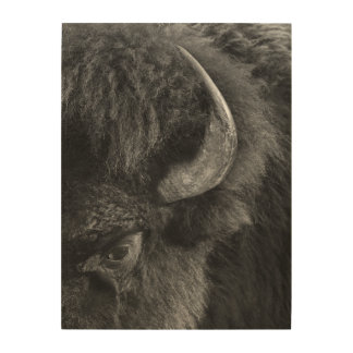 Watchful Eye of the Dominant Bull Bison Wood Wall Art