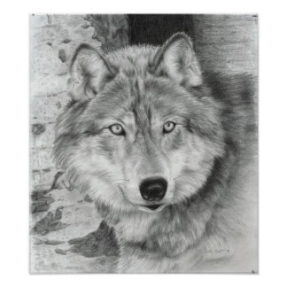 Watchful Eyes wolf poster