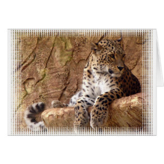 Watchful Leopard Greeting Card