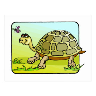Watchful Turtle Postcard