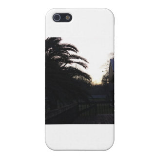 Watching the Sunset Cases For iPhone 5