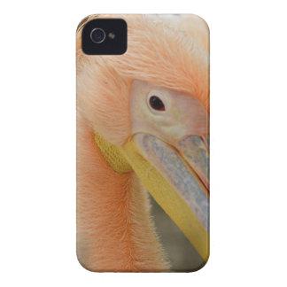 Watching You Pelican BlackBerry Case