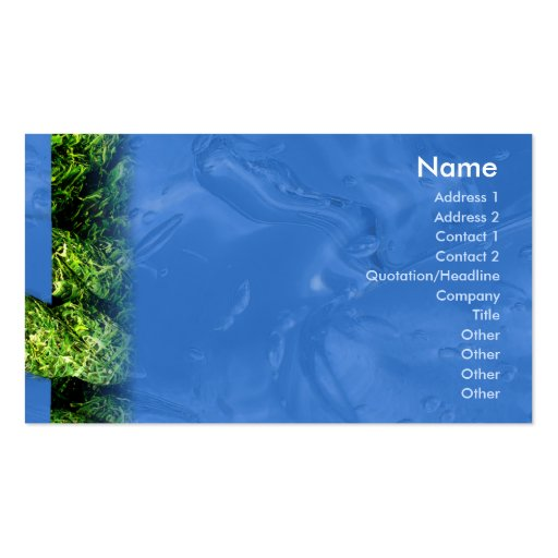 Water and Grass - Business Double-Sided Standard Business Cards (Pack Of 100)