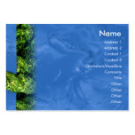 Water and Grass - Chubby Business Card Templates
