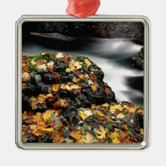 Water Autumn Covered Rock Elk River Silver-Colored Square Decoration