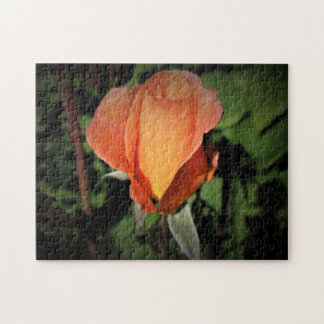 Water Beads On Orange Rose Jigsaw Puzzle