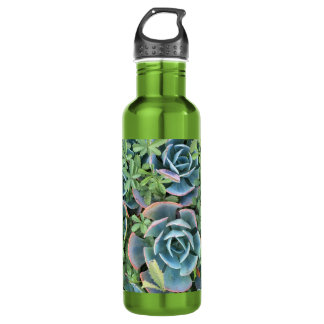 Water bottle beautiful cacti mixed into greenery
