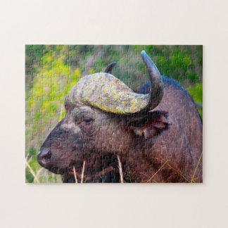 Water Buffalo Jigsaw Puzzle
