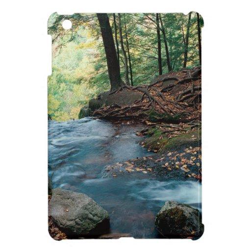 Water Buttermilk Falls Delaware iPad Mini Cover