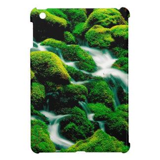 Water Clear Falls Oregon iPad Mini Cover