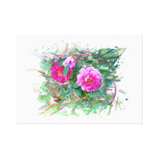 Water color, Watercolor. Hedge rose, flowers Canvas Print