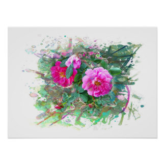 Water color, Watercolor. Hedge rose, flowers Poster