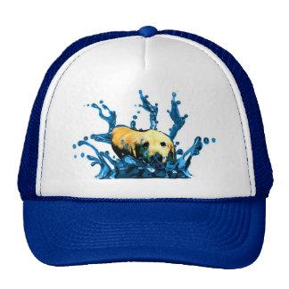 Water Dog Mesh Hats
