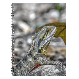 WATER DRAGON AUSTRALIA ART EFFECTS SPIRAL NOTEBOOK