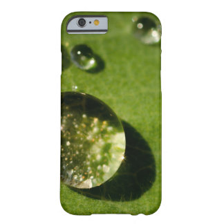 Water droplet case barely there iPhone 6 case