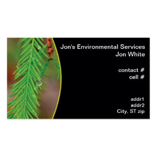 Water droplet on bald cypress foliage business card template