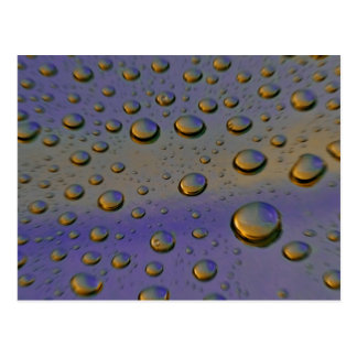 water droplets macro post cards