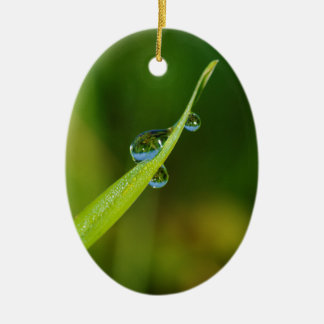 Water Droplets on a Green Blade of Grass Ceramic Oval Decoration