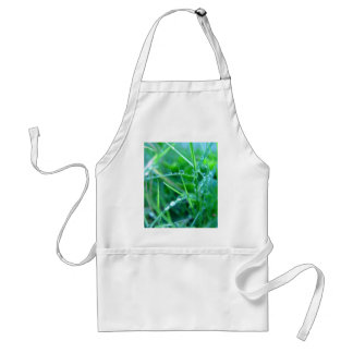 Water Droplets on Grass Aprons