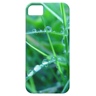Water Droplets on Grass iPhone 5 Case