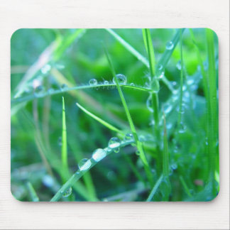 Water Droplets on Grass Mouse Pads