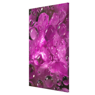 Water drops on flower, California Canvas Print
