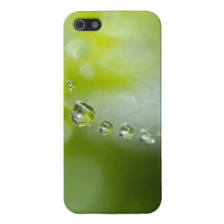 Water drops on web iPhone 5 cases