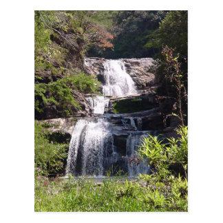 Water Fall River Postcard