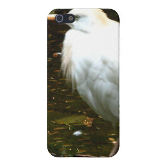 Water Fowl iPhone 5 Case