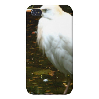 Water Fowl iPhone 4 Cases