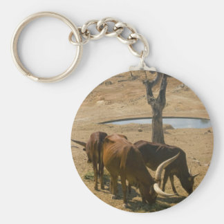 Water Hole Key Chains