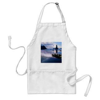 Water Hover Craft Speeds Aprons