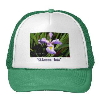 Water Iris Cap