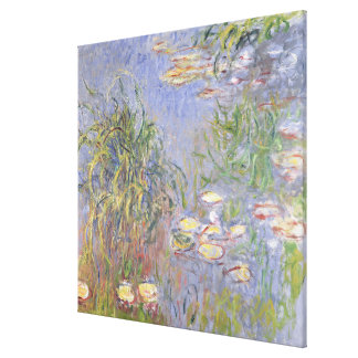 Water-Lilies, Cluster of Grass Canvas Print