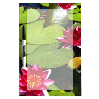Water Lilies Dry-Erase Board