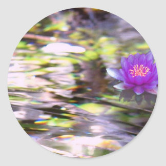 Water Lilies Floating sticker