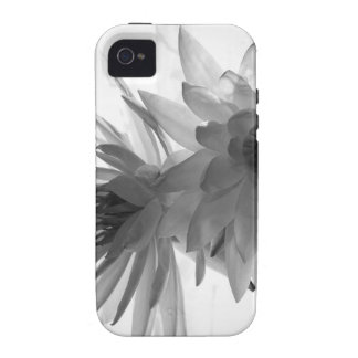 Water Lilies in Monochrome iPhone4 Case