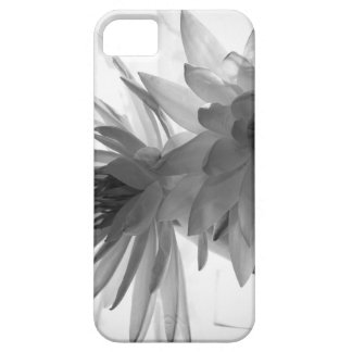 Water Lilies in Monochrome iPhone 5/5S Covers
