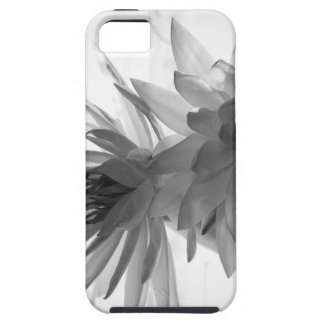 Water Lilies in Monochrome iPhone 5 Case