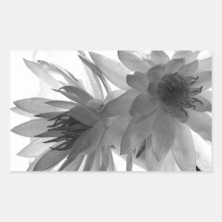 Water Lilies in Monochrome Rectangular Sticker
